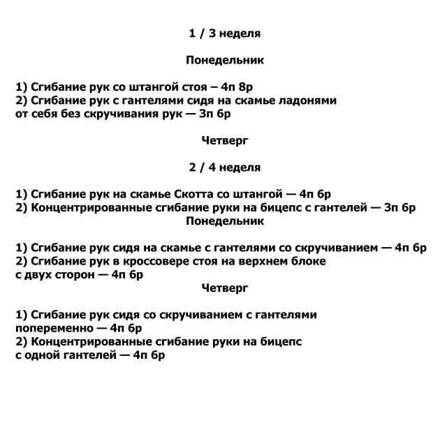 Программа тренировок на бицепс для тренажерного зала для мужчин