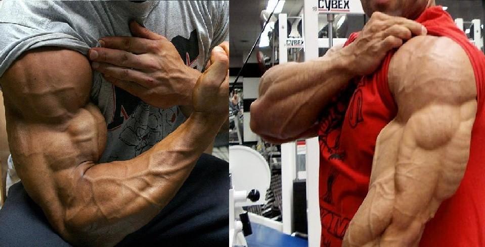 Тренировка бицепса и трицепса как накачать руки